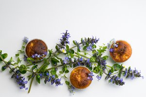 Muffins and field flowers