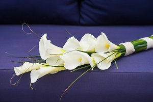 White calla lilies in bunch