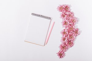 Pink flowers and an open blank
