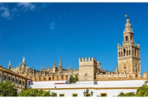 View of Seville Cathedral - Andalusia, Spain