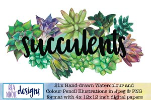 Succulents watercolour clip art