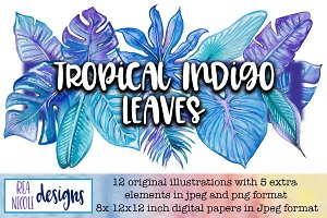 Tropical Indigo Leaves