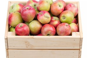 box full of fresh apples isolated