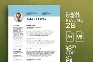 Resume Template 28