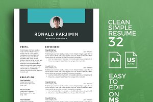 Resume Template 32