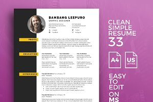 Resume Template 33