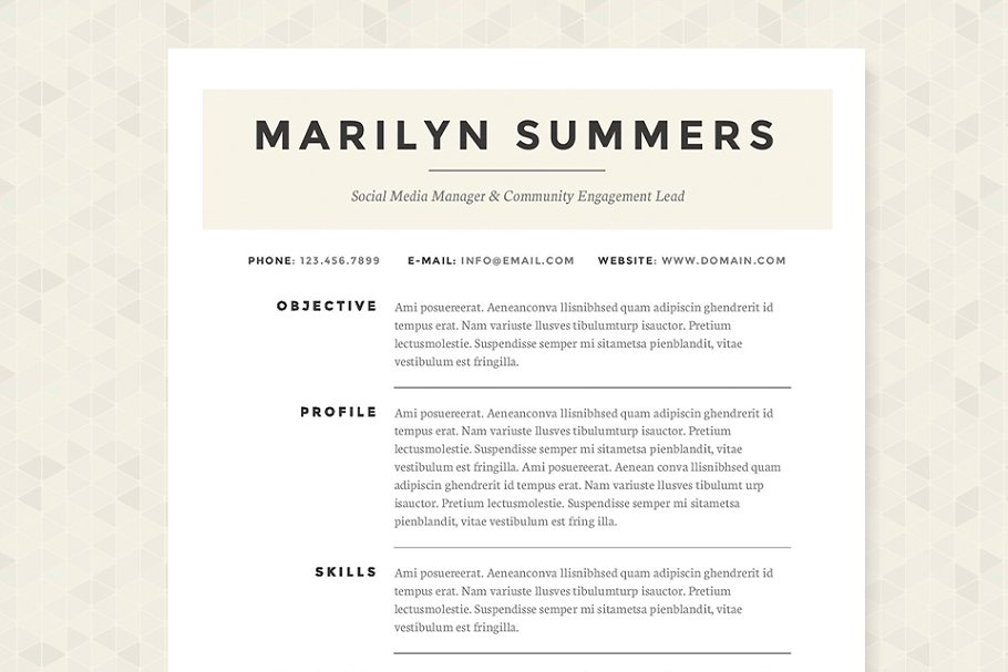 Classic Resume Template Package Templates Creative Market