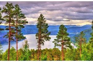 View of Nordfjorden fjord near Utvik - Norway