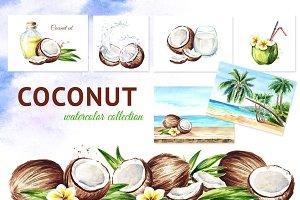 Coconut. Watercolor collection