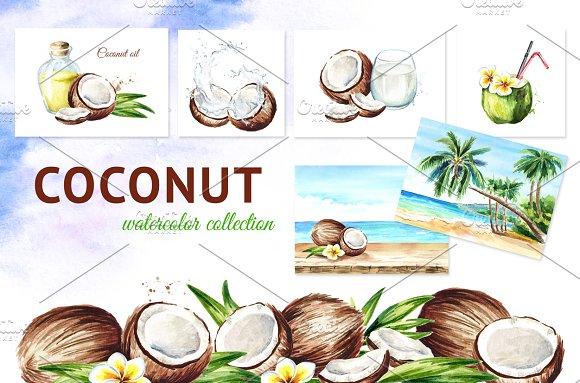 Coconut Watercolor Collection