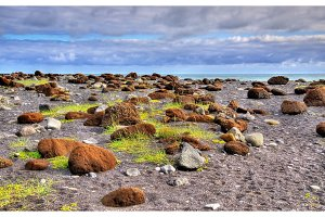 Stones at Reynishofn beach - Iceland