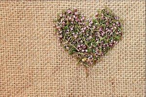 Heather heart