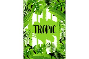 Background with tropical palm leaves. Exotic tropical plants. Illustration of jungle nature