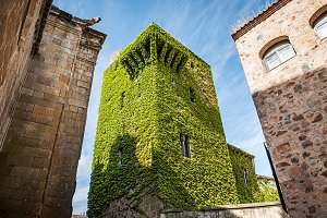 Stone building covered with ivy wind