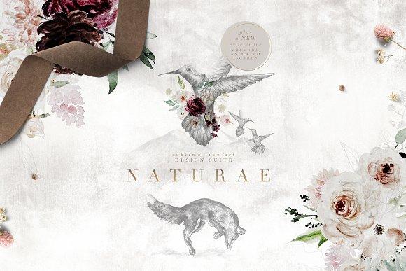 Naturae Sublime Fine Art