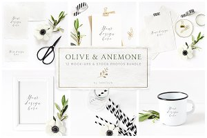 Olive & anemone stock photos,mockups