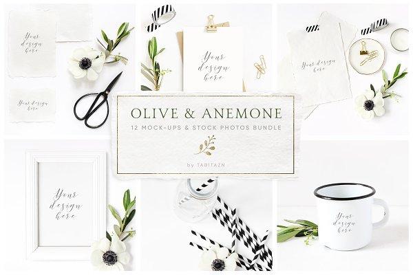 Olive & anemone stock photos,mockup…