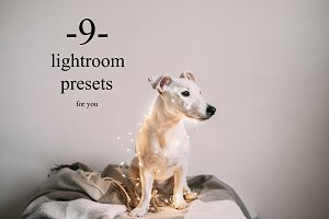 9 presets for lightroom