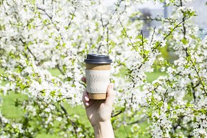 A cup of coffee on a spring day
