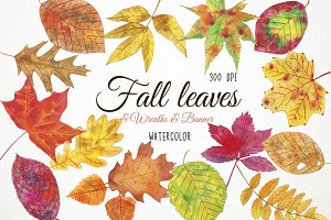 Watercolor Fall Leaves Clipart
