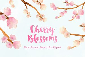 Cherry Blossoms Watercolor Clipart