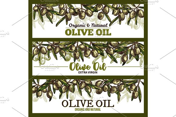 Vector Extra Vrigin Olive Oil Sketch Banners