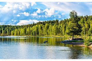 Sognsvann lake north of Oslo