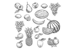 Vector sketch fruits isolated icons