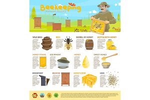 Honey beekeeping vector infographics