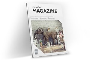 Magazine Template InDesign 11