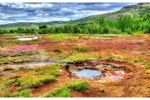Hot springs in Haukadalur Valley - Iceland
