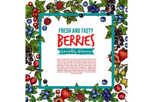 Vector garden and forest berries sketch poster