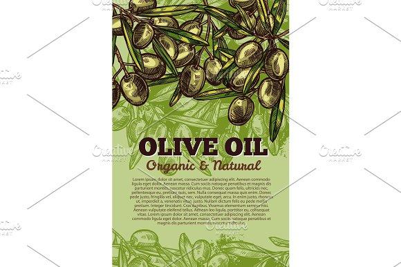 Vector Olives Bunch Poster For Olive Oil