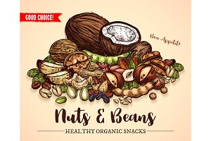 Vector sketch poster of nuts and fruit beans seeds
