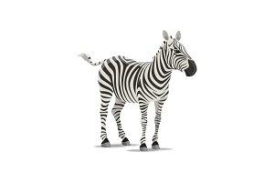 Zebra vector sketch exotic animal icon