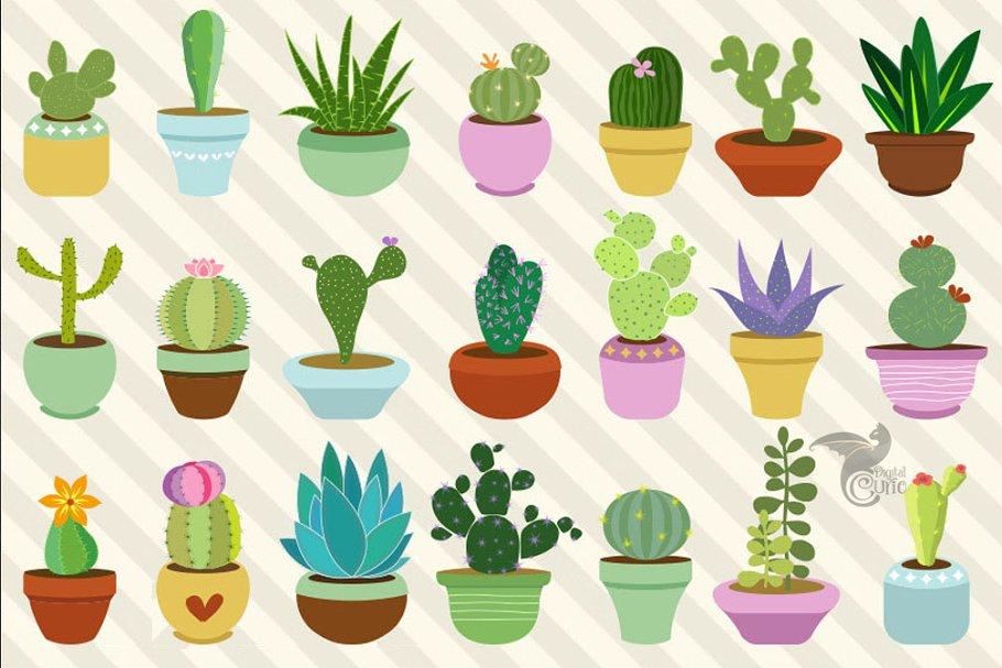 Cactus succulent. Cacti and succulents clipart