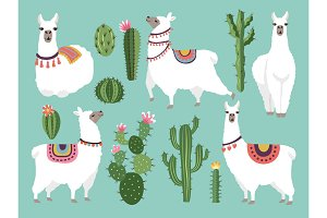 Illustrations of funny llama. Vector animal in flat style