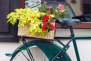 Vintage bicycle with flower basket