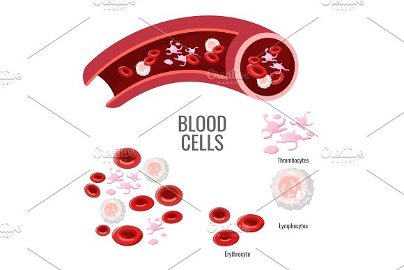 Blood Cells Exploration Scientific Poster With Microscopic Bodies