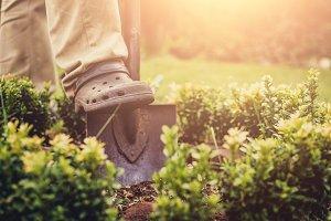 Garden work.