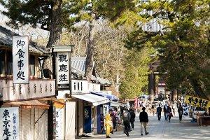 Nara deer street