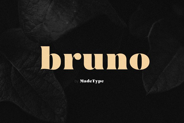 Serif Fonts - MADE Bruno
