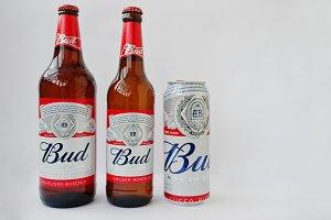 beer Bud