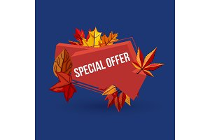 Special offer geometric label with autumn leaves