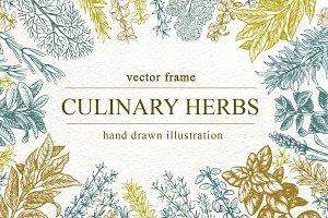 Culinary Herbs Vector Frame