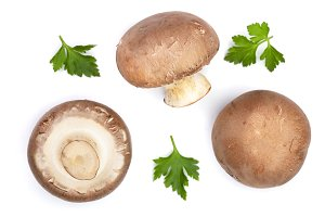 Fresh champignon mushrooms with parsley isolated on white background. Top view. Flat lay