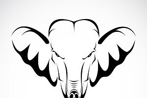 Vector of elephant head.
