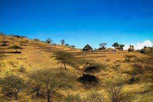 View to Bilen aka Bogo or Agaw tribe village near Keren, Anseba region,Eritrea