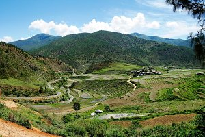 Lobesa valley with monastery Chimi Lhakhang