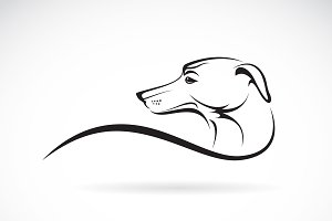 Vector of a dog head. Pet. Animals.